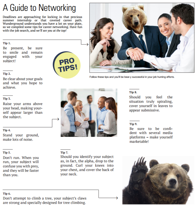 guide-to-networking